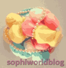 PERLE sophiworldblog.wordpress.com