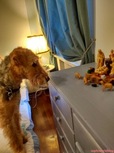 airedale-and-crib