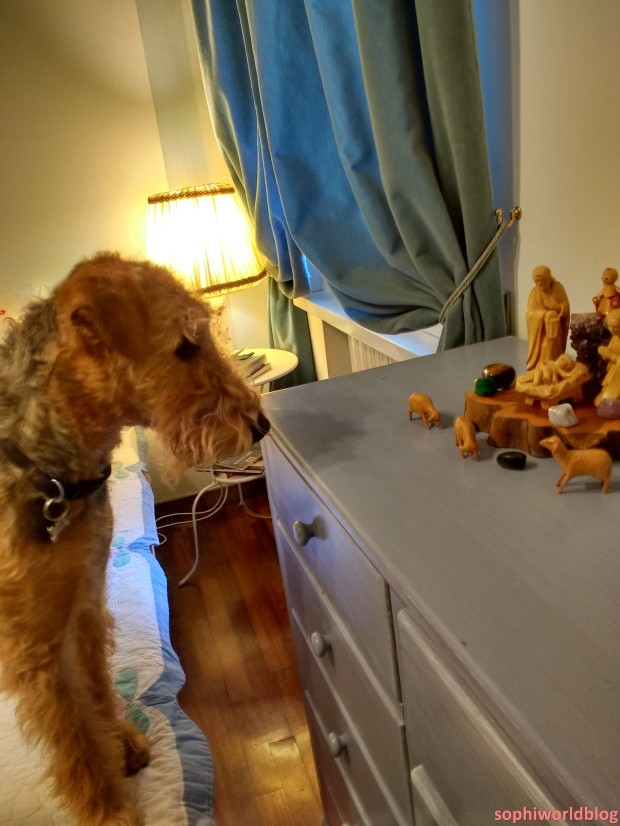 Airedale and Crib! Read more on www.sophiworldblog.com